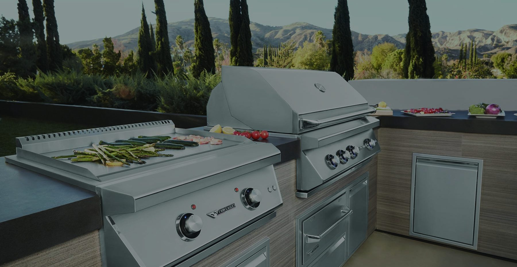twin eagles grills copy e1601236671443